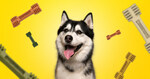 Free Sample of Dog Food Delivered from Happi Doggy
