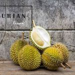 $48 MSW and XOD24 Durian Buffet (was $58) at Durian Reserve SG (Tampines) [Booking Required)