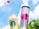 Free Tall-Sized Green Tea Strawberry Blossom Frappuccino & Drink Voucher with A 16oz Tumbler Purchase ($24.90) at Starbucks