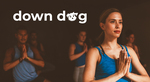 3 Free Exercise Apps - 7 Minute Workout, HIIT, Barre @ Downdog