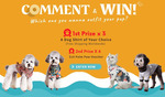 Win 1 of 3 Prizes of Dog Hawaiian Shirts for Dog Beach Adventures from Palm Paw
